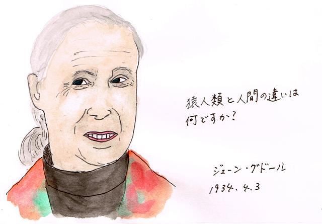 4月3日 ジェーン・グドール